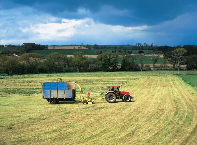 """Приключи предварителният подбор на проекти по мярка 4.1 """"Инвестиции в земеделски стопанства"""""""